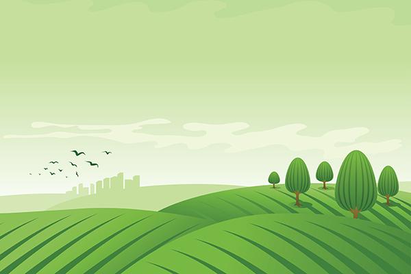 vector landscape illustration.